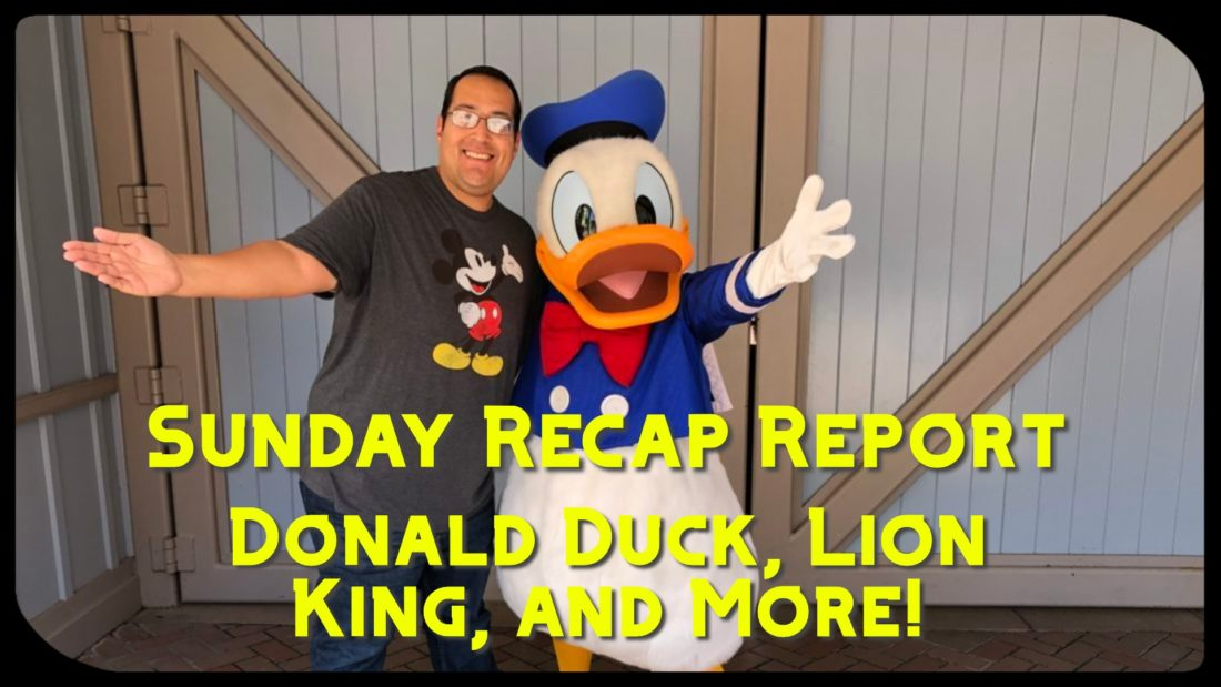 Sunday Recap Report – Donald Duck, Lion King, and More!