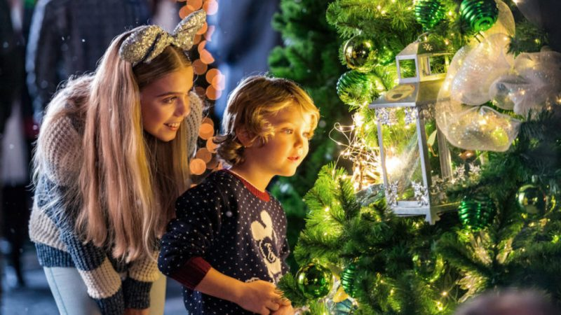 Disney Springs - Christmas Tree Trail