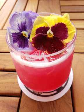 GCH Craftsman Bar & Grill Prickly Pear Rose_01