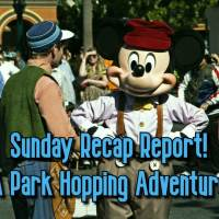 Sunday Recap Report - A Park Hopping Adventure