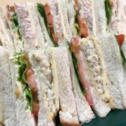 Sandwich Isi Tuna