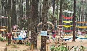 Wisata Gunung Pancar dan Curug-Curugnya