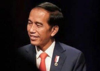 Presiden, Joko Widodo (Foto: merdeka.com)