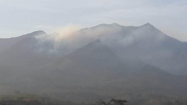Asap mengepul di kawasan hutan Gunung Puntang (Foto: galamedianews.com)