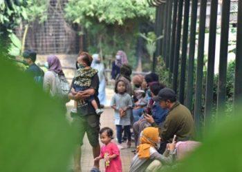 Objek wisata Kebun Binatang Bandung di Jalan Taman Sari, mulai ramai dikunjungi, Sabtu (27/6/2020). (Foto : IDN Times)
