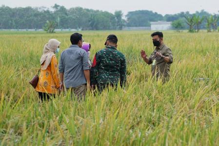 foto: pertanian.go.id