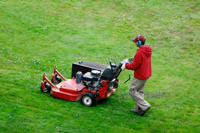 lawn mowing startup solution