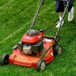 Services to Add in your Lawn Mowing Business