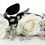 How to Start Wedding Roses In A Box Business And Earn Good Profits?