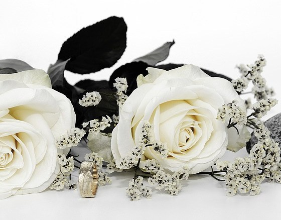 Wedding Roses Business