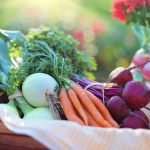 How Vegetables are good for your Health