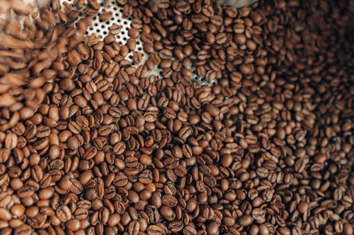 Arabica coffee importers