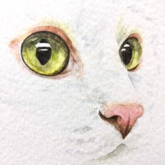 Trill-Closeup