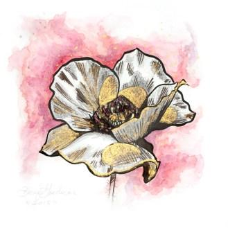 Melt | Poppy Painting by Darcy Goedecke