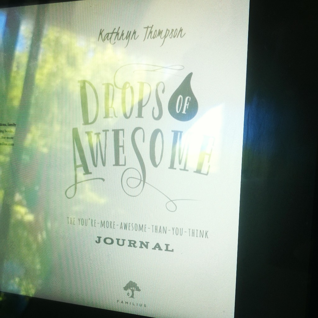 drops book