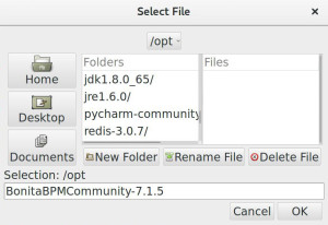 04-select-folder-bonita-installation-edit