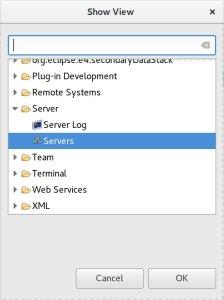 01-add-new-server-wildfly