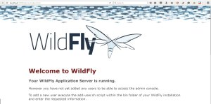 wildfly-default-page
