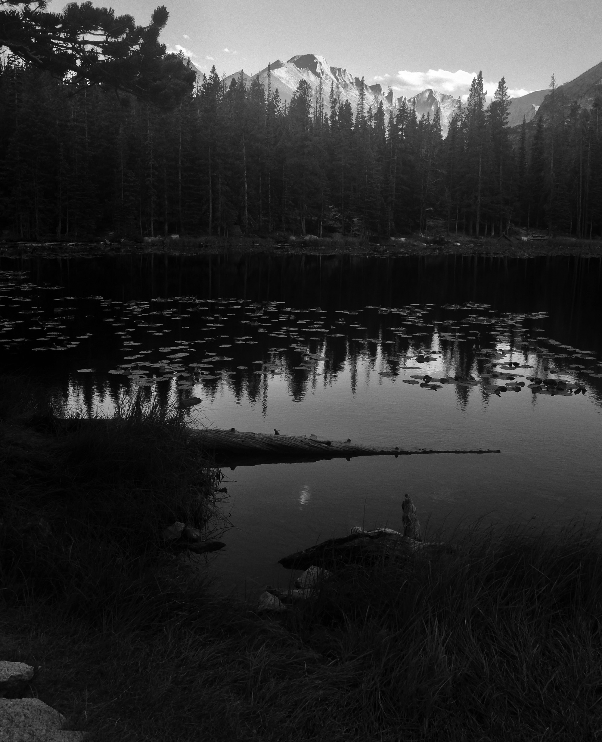 Nymph Lake, Rocky Mountain National Park, CO