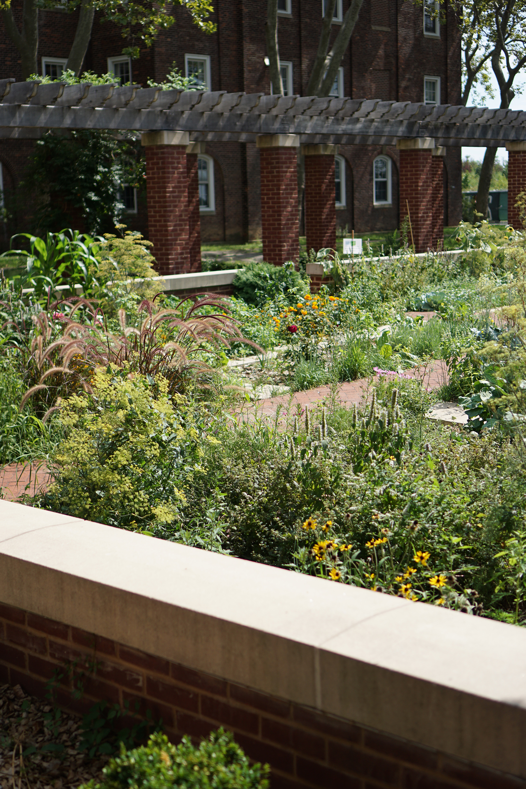 Garden at the New York Harbor School / NYC Green City Guide / Darker than Green