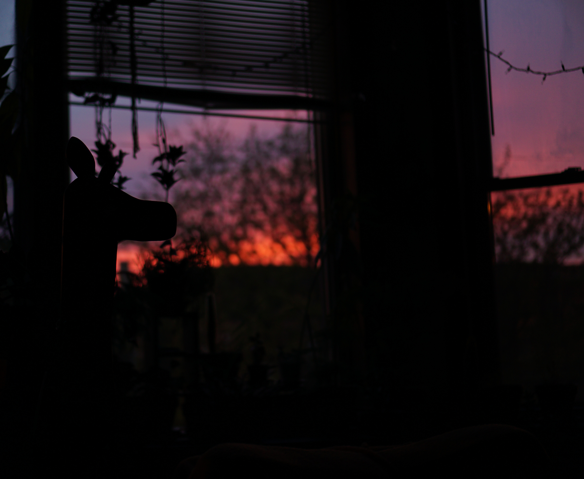 Hot pink sunset on an early May evening, Chicago IL / Darker than Green