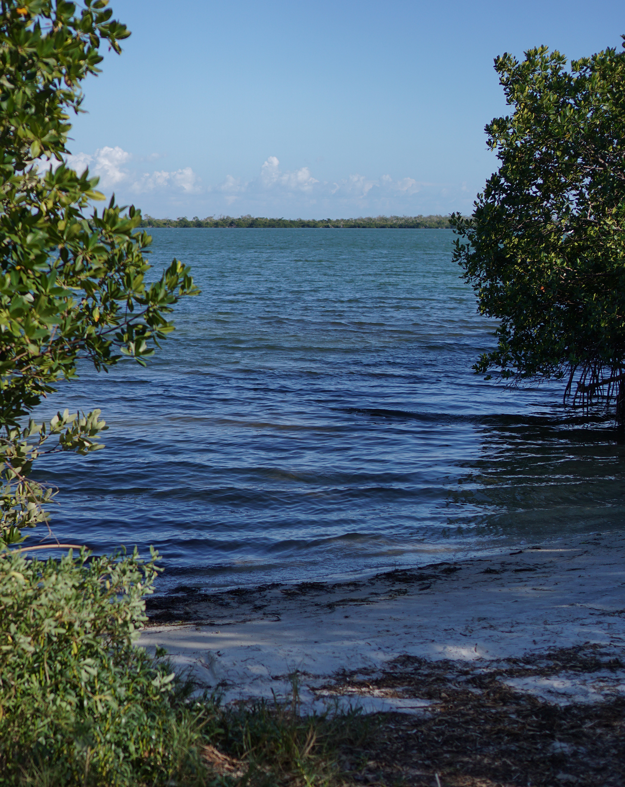 The view toward Pelican Bay from Cayo Costa, Florida / Darker than Green