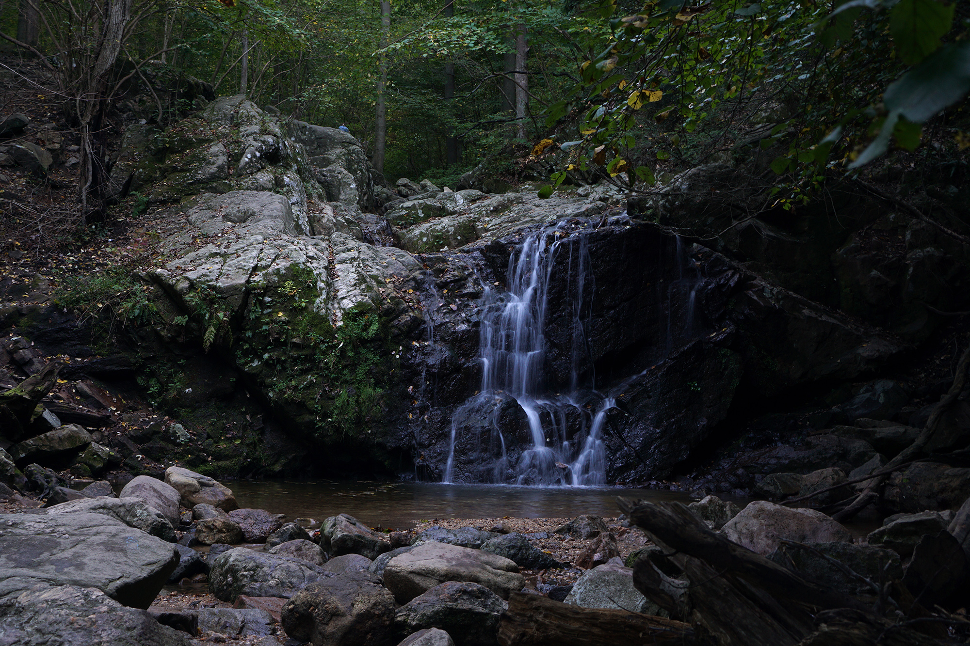 Cascade Falls, Patapsco Valley State Park, Maryland / Darker than Green