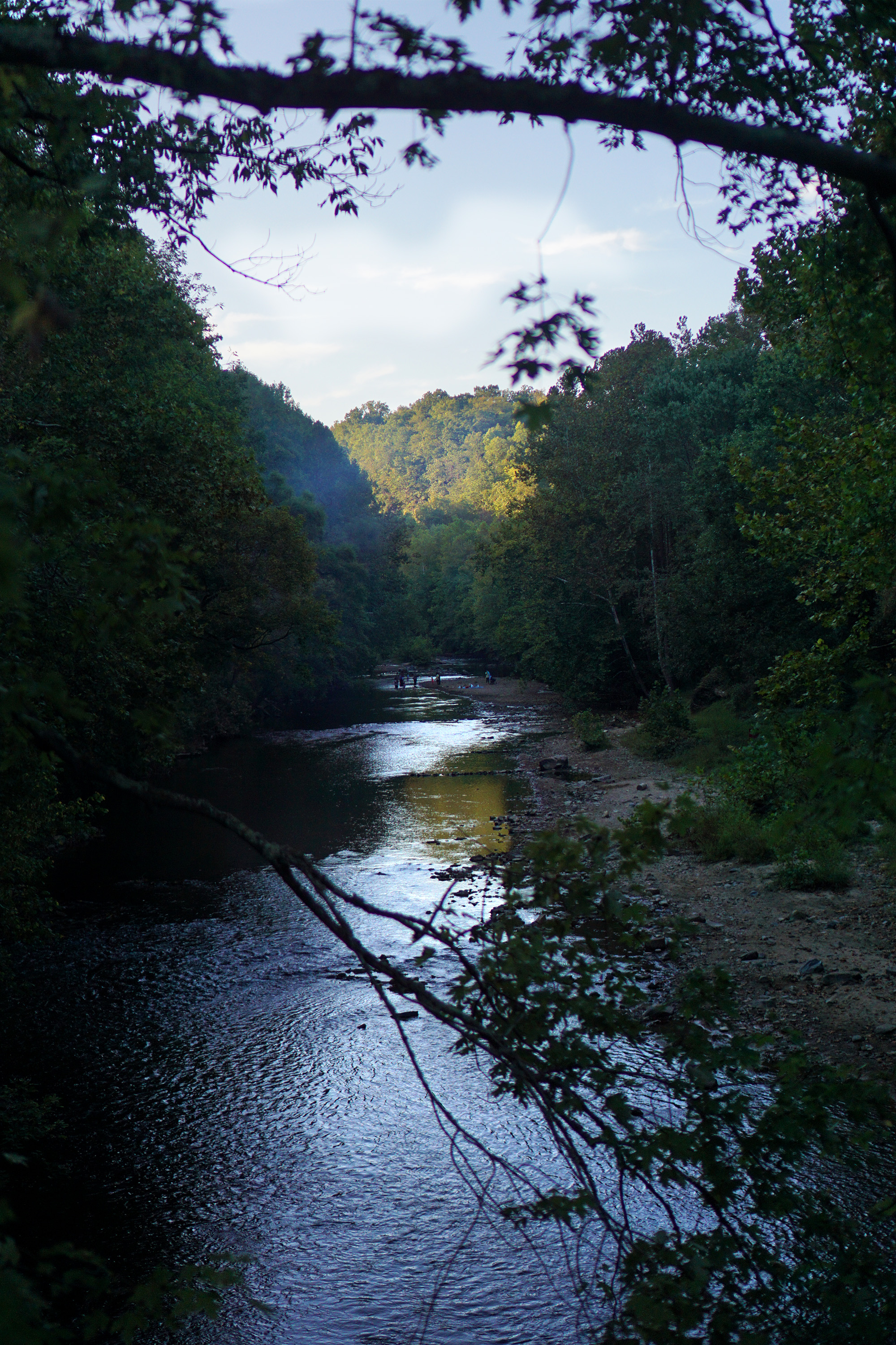 View from the swinging bridge, Patapsco Valley State Park, Maryland / Darker than Green