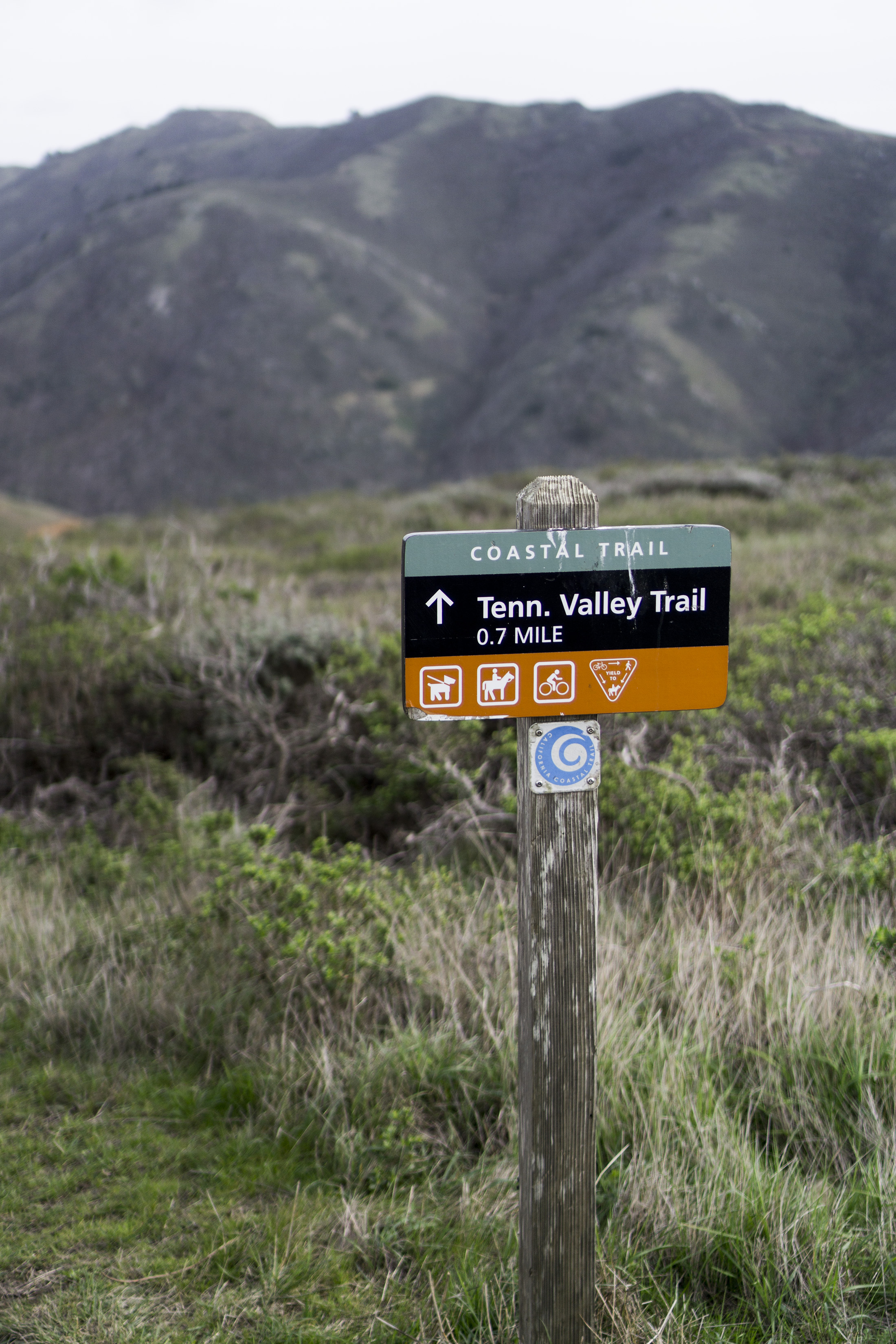 Tennessee Valley Trail marker, Marin Headlands, Golden Gate National Recreation Area / Darker than Green
