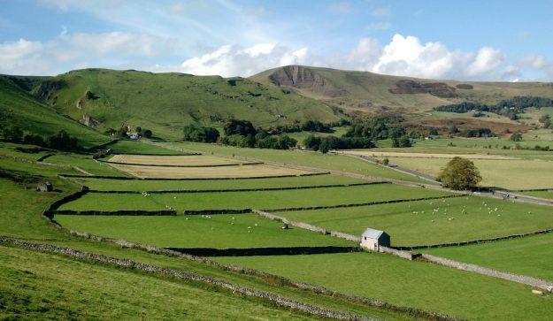 Castleton Fields