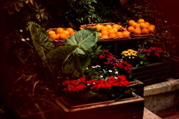 Darkroom Malta, E6, Slide Film, 35mm, EOS1, Scanning, Street Photography, Agfa Precisa at ASA200