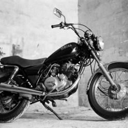 Kentmere 400, Darkroom Malta, Analog Photography, 35mm Film, Black and White, Alan Falzon