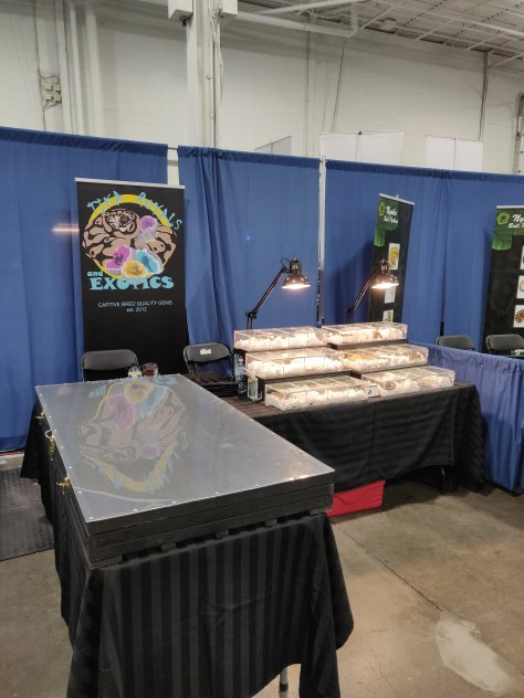 Todays Canadian Reptile Breeders Expo (CRBE) was a blast