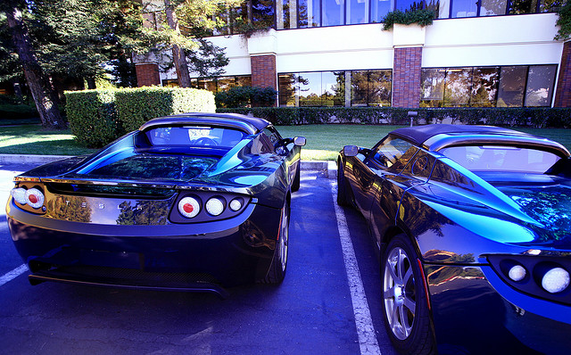 """Two Teslas in the Wild"" by jurvetson on Flickr"