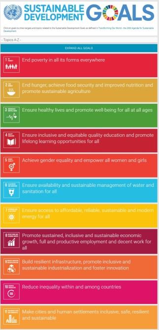 Screenshot from the UN Sustainable Development Goals website