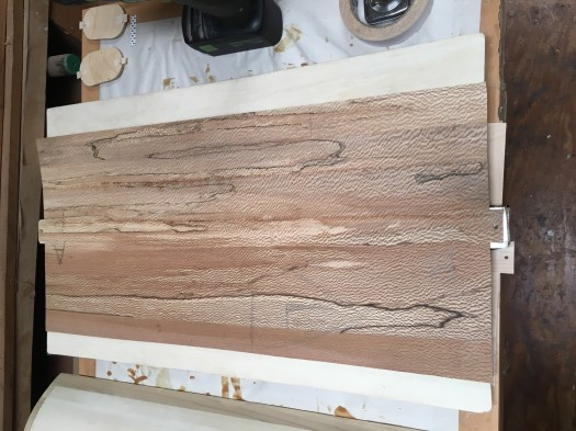 Sycamore veneer for the rear panel