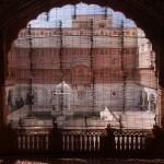 Through a screen by Suchi Govindarajan