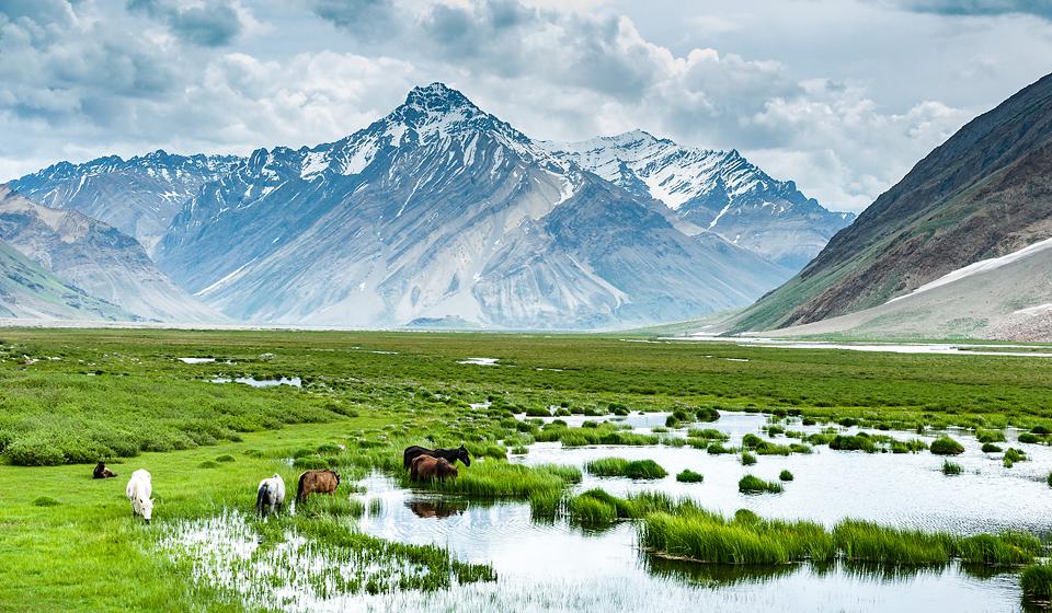 zanskar-himalayas-photography-44