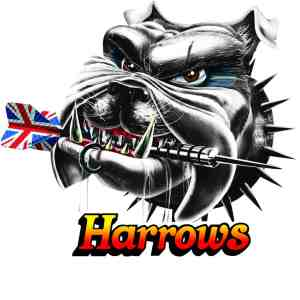 Harrows V-Wing Range - Chequered Dart Flights