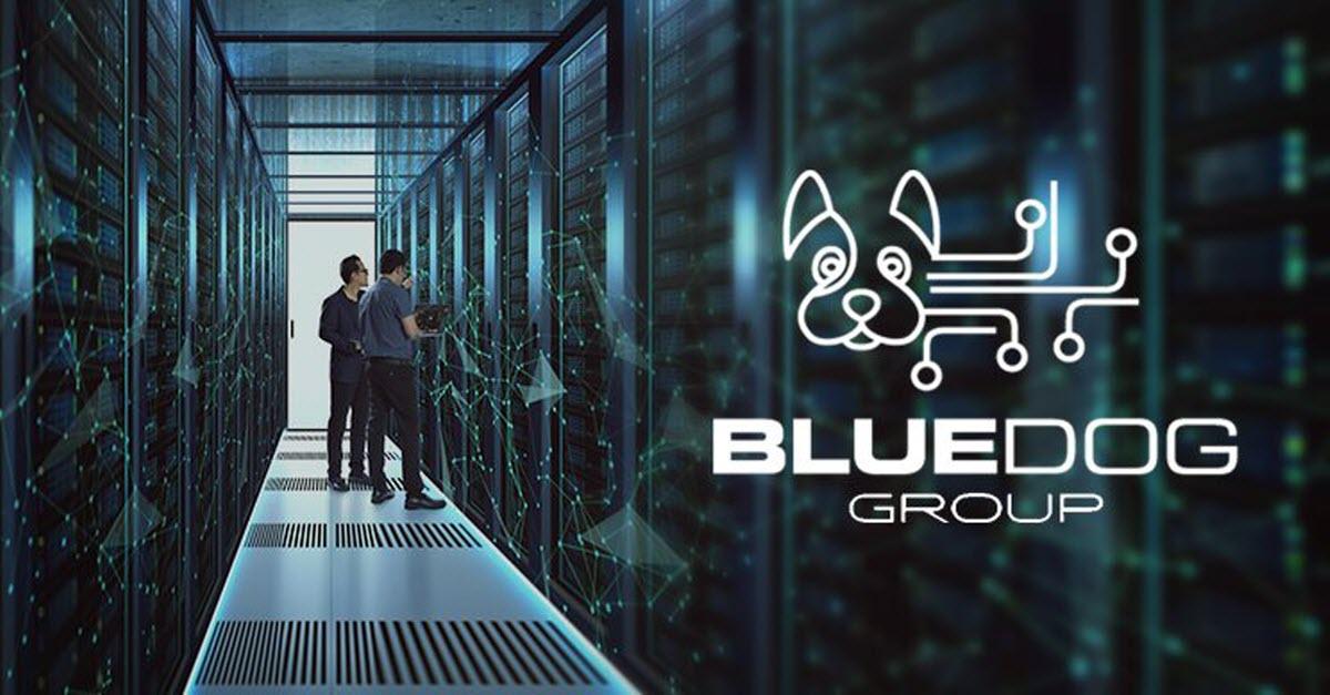 BlueDog Data