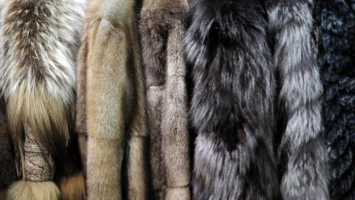 Kunstpelz oder echter Pelz?