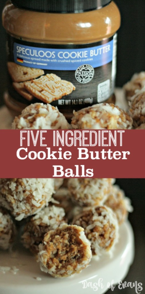 No-Bake Cookie Butter Balls--and they're NO BAKE! So quick and easy--you might as well double the recipe!