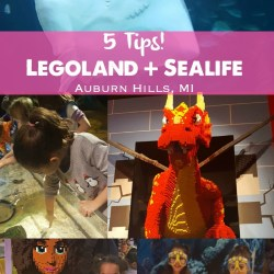 Birthday Fun: LEGOLAND & SEA LIFE–Plus 5 Tips for Families!