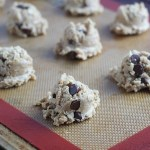 Calling all Nursing Moms: Milky Monster Lactation Cookies!