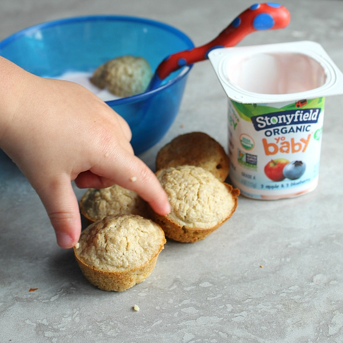 Easy homemade ideas for toddlers to eat featuring Stonyfield yogurt! via @DashOfEvans