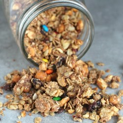 Chunky Monkey Trail Mix Granola