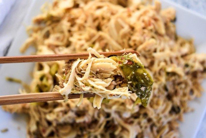 Slow Cooker Spicy Shredded Chicken | Dash of Jazz