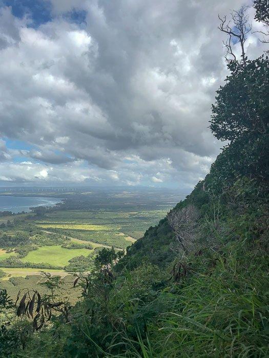 View along Kealia Trail Oahu Hawaii