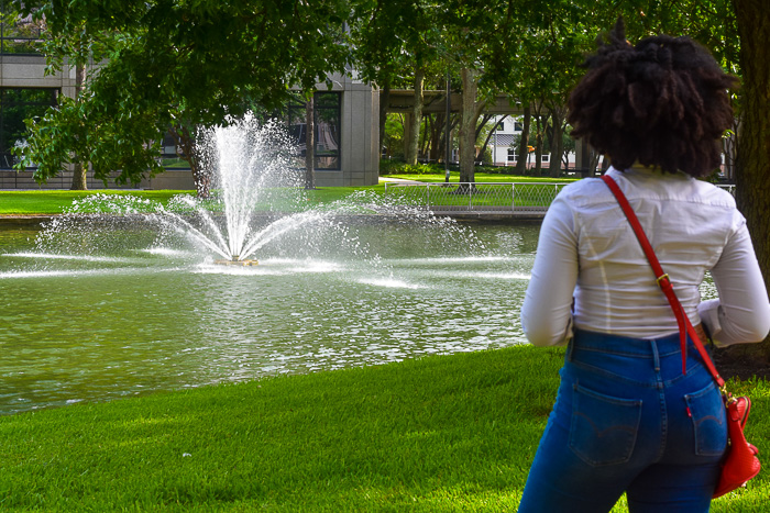 Dash of Jazz admiring Houston water feature