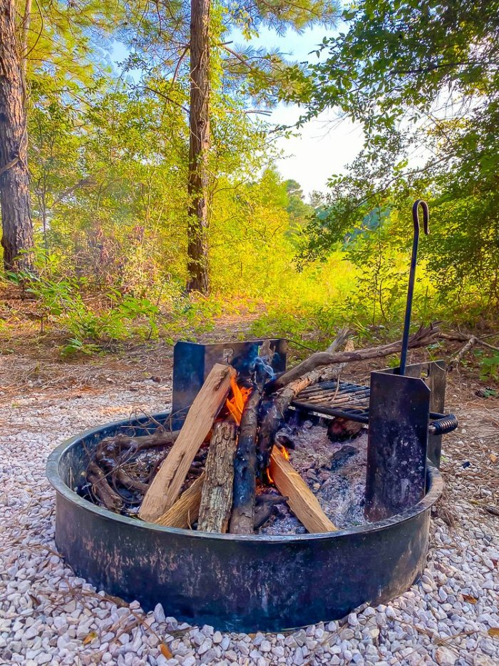 burinng wood in fire pit